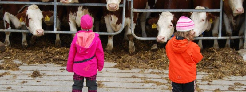 Státní zemědělský intervenční fond zahájil příjem Jednotné žádosti 2021